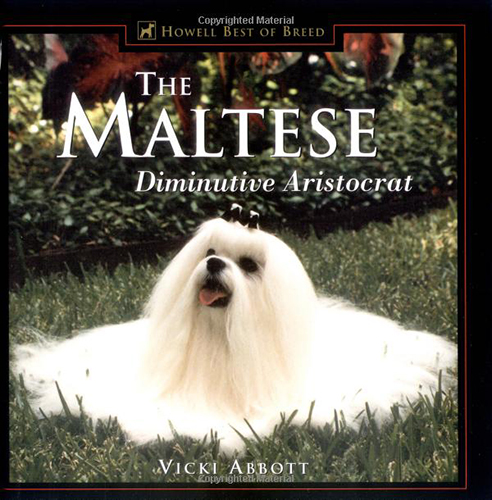 the maltese diminutive aristocrat abbott 2000