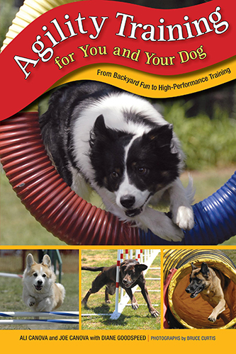 agility training for you and your dog canova canova goodspeed curtis 2008