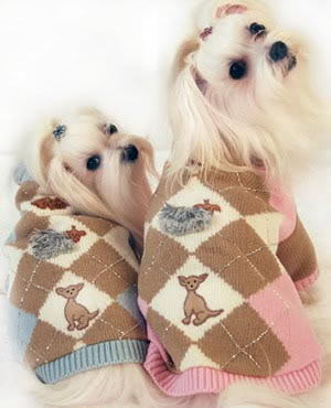 Maltese Sweater